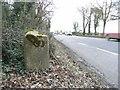 N9965 : Milestone on the N2 at Flemingstown, Co. Meath by JP