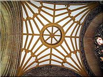 ST6834 : Fan vaulting - Parish church Bruton by Sarah Smith