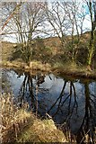 NR4268 : Reflections By Loch Allan by Mary and Angus Hogg