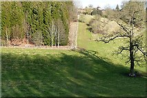 SU6578 : Combe near Pathhill Farm by Graham Horn