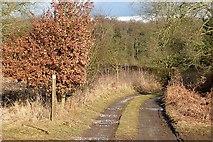 SU6579 : Footpath towards Haw Farm by Graham Horn