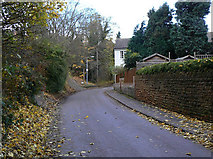 SK6443 : Lambley Lane by Alan Murray-Rust