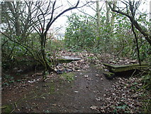 TG2209 : Remains of Norwich City M&GN station by Ashley Dace