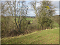 SO4510 : View from earthworks at Dingestow by Pauline E