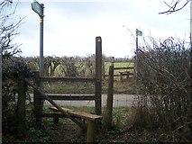 TQ8854 : Footpath crossing Hogbarn Lane by David Anstiss