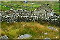 B8132 : Brinlack - Derelict cottage by Joseph Mischyshyn