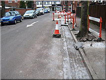 SK4833 : New Drainage Channel, Lime Grove, Long Eaton by David Lally