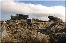 SX6767 : Pupers Rock by Derek Harper