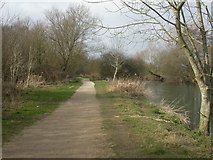 SZ0995 : Stour Valley Nature Reserve, footpath by Mike Faherty