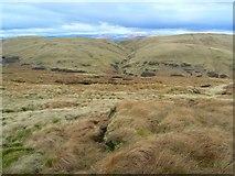 NN9205 : Wether Hill, seen across Glen Devon from Bald Hill by James Allan