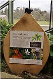 TQ1877 : Plaque, Princess of Wales Conservatory, Kew Gardens, Surrey by Christine Matthews