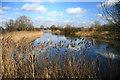 TL4384 : Angling lake at Block Fen by Bob Jones