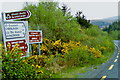 C0422 : R251 road signs at Glenveagh National  Park by Suzanne Mischyshyn