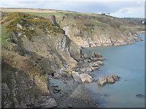SX8848 : Shinglehill Cove by Roger Cornfoot