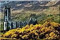 B9219 : Dunlewy - Derelict church near Poison Glen by Joseph Mischyshyn