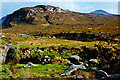 B9318 : Poison Glen - Southerly view from arched footbridge by Joseph Mischyshyn