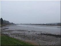 SY2591 : Axe estuary at low tide by John M
