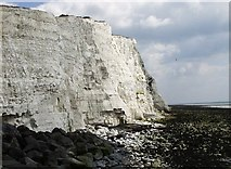 TQ4200 : Cliffs at Peacehaven Heights by Mat Fascione