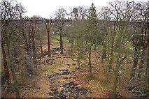 TQ1876 : View from the Xstrata Treetop Walkway and Rhizotron, Kew Gardens, Surrey by Christine Matthews