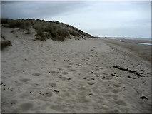 NZ2796 : Sand Dunes of Druridge Links by Chris Heaton