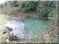 N9936 : Chalybeate Spring, Leixlip, Co. Kildare by JP