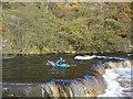NZ1014 : Lido Falls, Whorlton by Andy Waddington