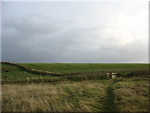 SH3368 : Field boundary and kissing gate west of the stream by Eric Jones