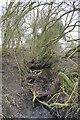 SU4190 : Ditch by the lock by Bill Nicholls