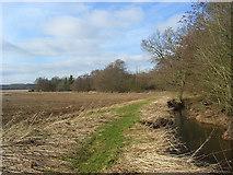 SU5263 : Farmland, Headley by Andrew Smith
