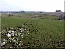 NU0011 : Ruined wall south of Prendwick by Andrew Curtis