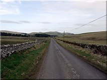 NT9911 : Minor road near Alnham House by Andrew Curtis