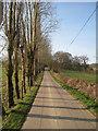 TQ7222 : Drive to Glottenham Manor by Oast House Archive