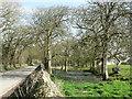 SS9369 : Approaching Somerset farm near St Donats. by Mick Lobb