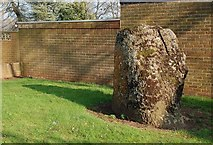 NS3218 : An Ancient Stone by Mary and Angus Hogg