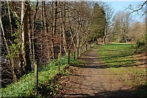 NS3218 : Riverside Path by Mary and Angus Hogg