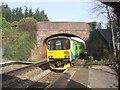 SO9080 : Brake Lane Railway Bridge by John M