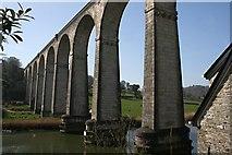 SX4368 : Calstock Viaduct by Tony Atkin