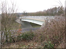 TR3051 : Bridge over the A256 at Tilmanstone by Nick Smith