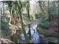 SP0278 : River Rea, Off Mill Lane, Northfield. by Roy Hughes