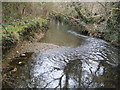 SU8771 : Bull Brook in Warfield by Nigel Cox