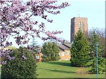 SU9850 : University of Surrey Campus by Colin Smith