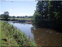 ST0207 : Mid Devon : River Culm by Lewis Clarke