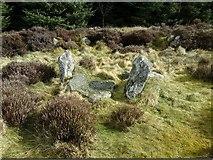 NJ9451 : Neolithic Monumentality by Ballogie
