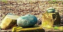 J3371 : Stones, Stranmillis, Belfast by Albert Bridge
