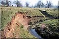 TL8061 : River Linnet in Ickworth Park by Bob Jones