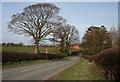 SJ6047 : Wrenbury Road, west of Aston by Espresso Addict