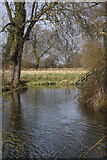 TL8063 : Moat of former Little Saxham Hall by Bob Jones