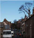 NU0052 : Tree-felling in Palace Street East, Berwick upon Tweed by Barbara Carr