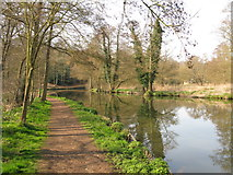 SU9948 : Footpath along the River Wey by Nick Smith