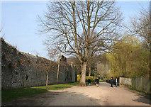 SU4828 : City walls, Winchester by Espresso Addict